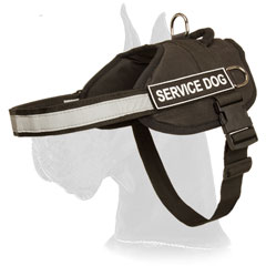 Nylon Great Dane Harness for Service Dog