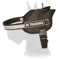 Nylon Great Dane Harness