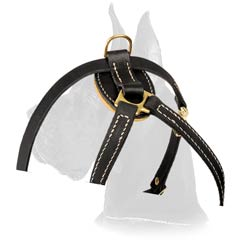 Fancy Leather Harness for puppy