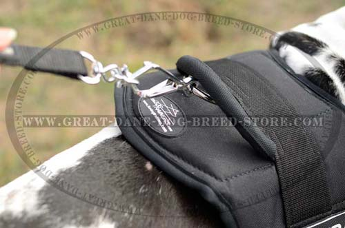 Stand Up Handle on Great Dane Harness