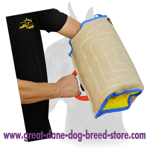 Excellent Training Great Dane Puppies Bite Sleeve Made of Jute