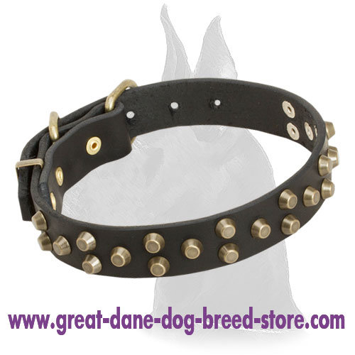 Leather Great Dane Collar with Attractive Design