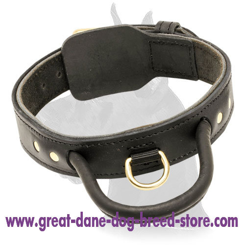 2 ply Leather Great Dane Collar with handle for training