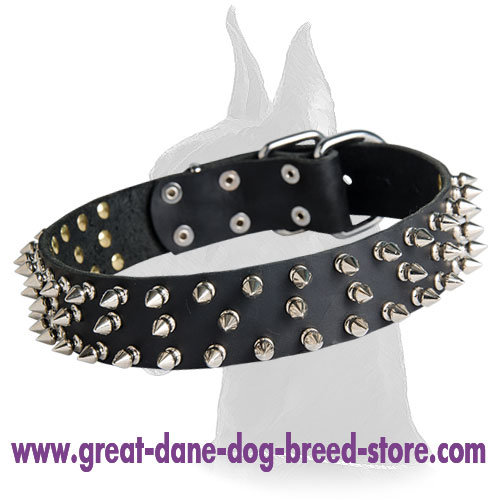 Quality Spiked Leather Dog Collar for Great Dane