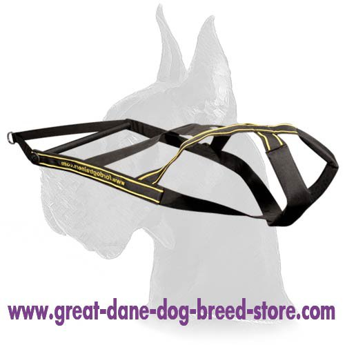 Nylon Dog Harness for Great Dane pulling activities