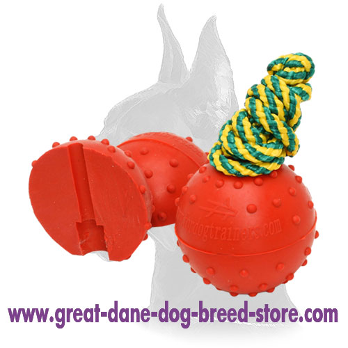 Water Rubber Bite Ball on a String for Training and Playing - Large 2 3/4 inch (7 cm)