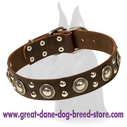 """Rock n Roll"" Leather Collar with Extravagant Decoration"