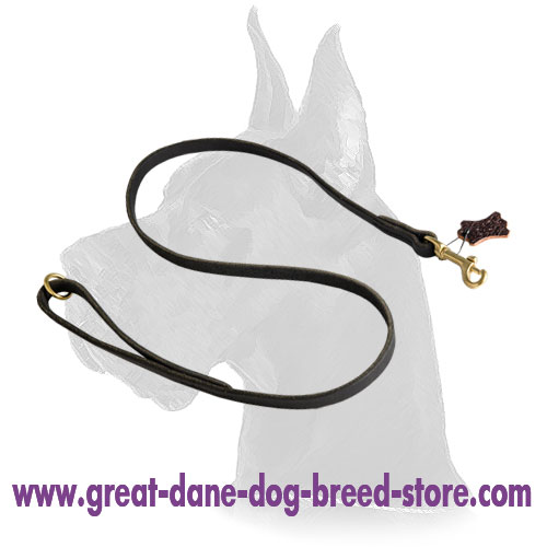 Multifunctional 1/2 inch Wide Leather Dog Leash