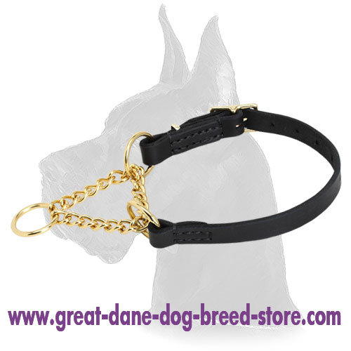 'Smart control' Martingale Leather Dog Collar