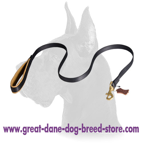 Great Dane Nylon Leash with Soft Padded Handle