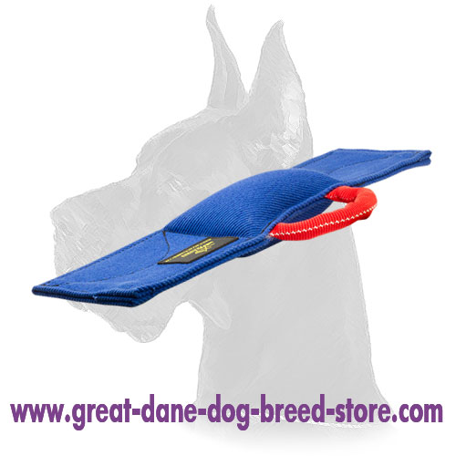 """Pro Guide"" Training Pad for Schutzhund Commands"