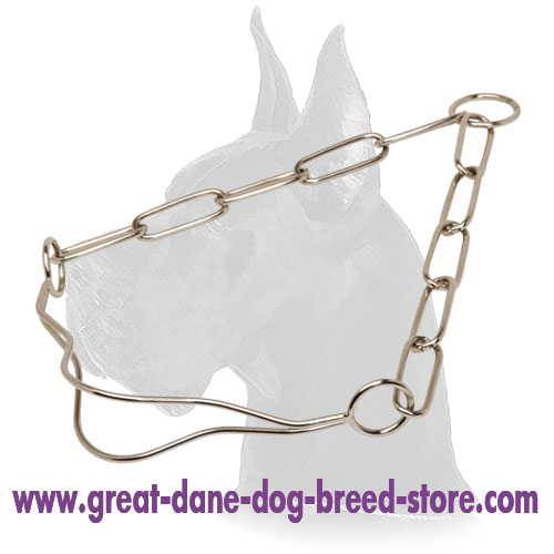 Chrome Plated Show Dog Collar