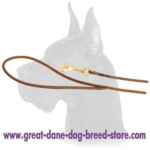 Topnotch Great Dane Leather Leash