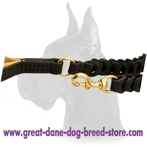 Awesome Great Dane Leather Dog Leash