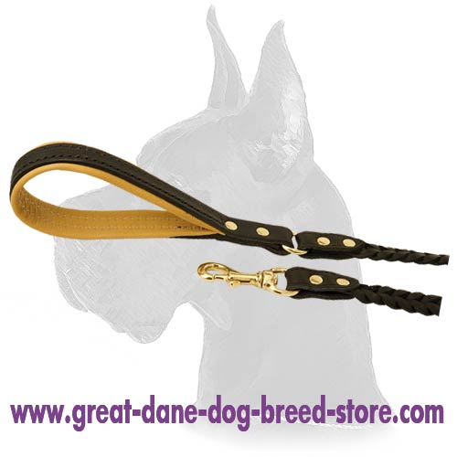 Great Dane Leather Dog Leash with strong snap hook