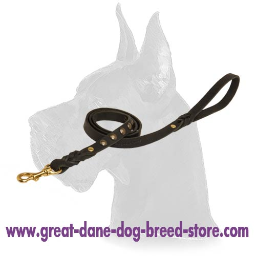 Fancy Great Dane Leather Dog Leash