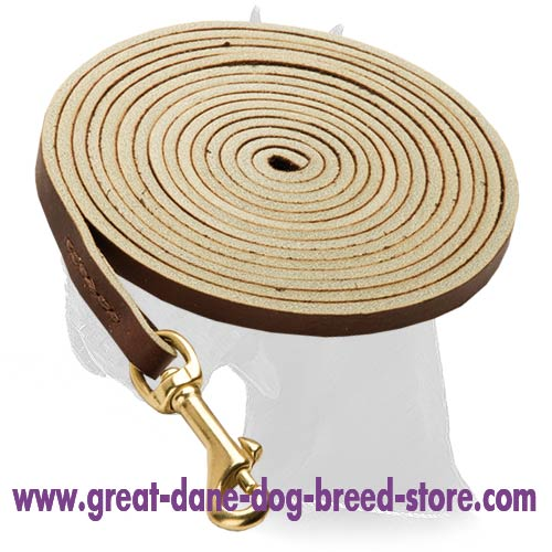 Soft Great Dane Leather Leash