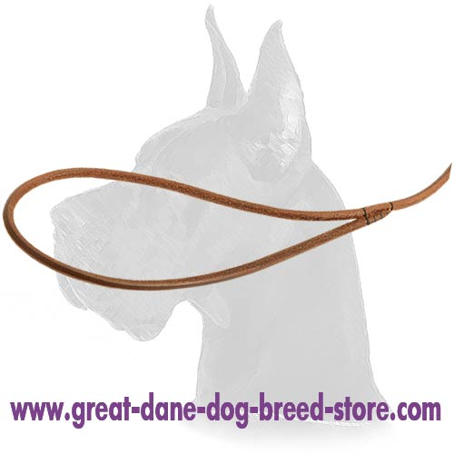 Great Dane leather Dog Leash