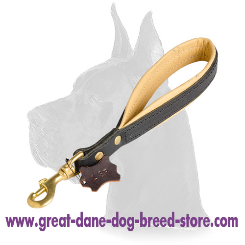 Short Leather Great Dane Leash