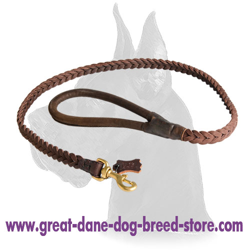 Braided Great Dane Leash for walking