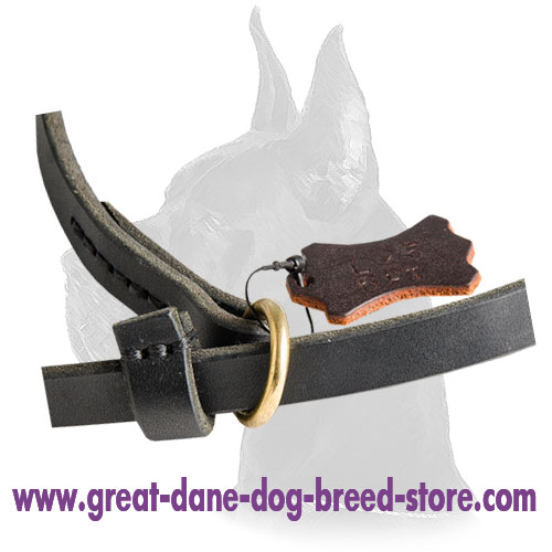 Leash and Slip Collar Combo for Great Dane