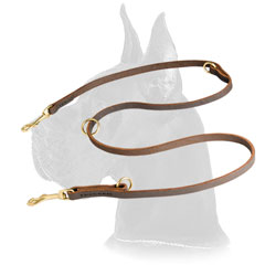Shiny brass hardware for leather Great Dane leash