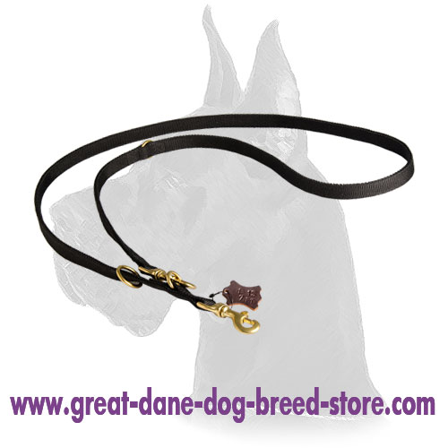 Nylon Great Dane Leash with brass hardware