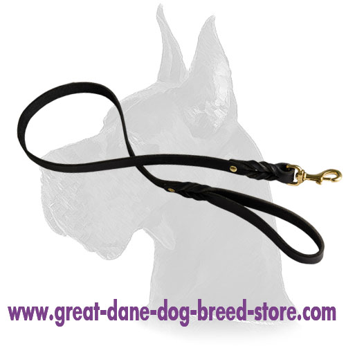 Handcrafted leather dog leash for walking and tracking