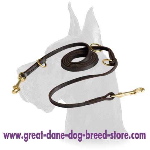Leather Great Dane Leash for walking