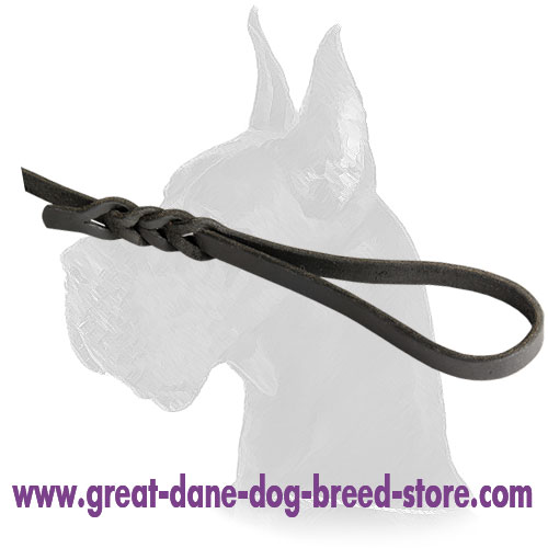 Soft to Your Hands Luxurious Leather Dog Leash