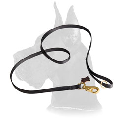Leather Great Dane Leash Stitched