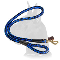 Brass snap hook for cord nylon Great Dane leash