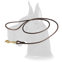 Round leather dog shows leash