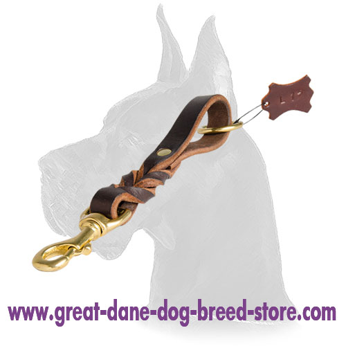 Training Leather Great Dane Pull Tab
