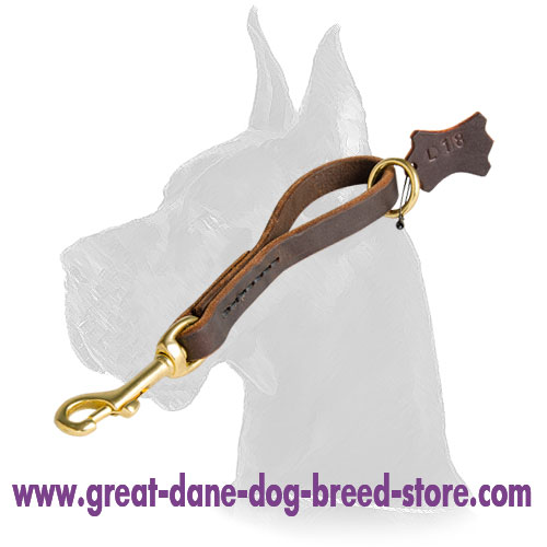 Leather Great Dane Pull Tab for walking