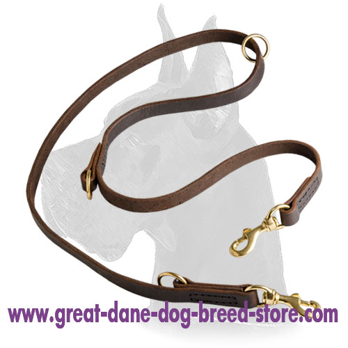 Leather Great Dane Leash with brass hardware