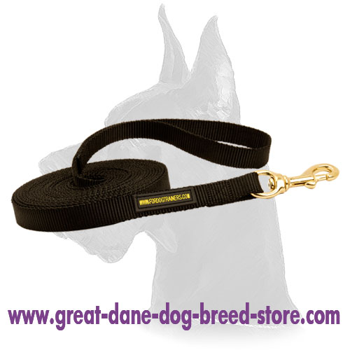 Nylon Great Dane Leash with brass snap hook