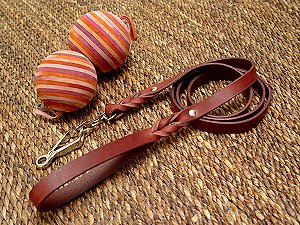 Excellent leather dog leash with quick release snap hook for Great Dane
