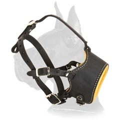 Padded Leather Muzzle