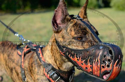 Painted Flames Leather Muzzle