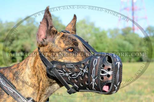 Painted Barbed Wire Leather Muzzle