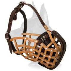 Dane Basket Leather Muzzle