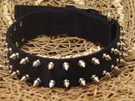 Black Nylon Spiked Dog Collar- 2 Rows of spikes big collar