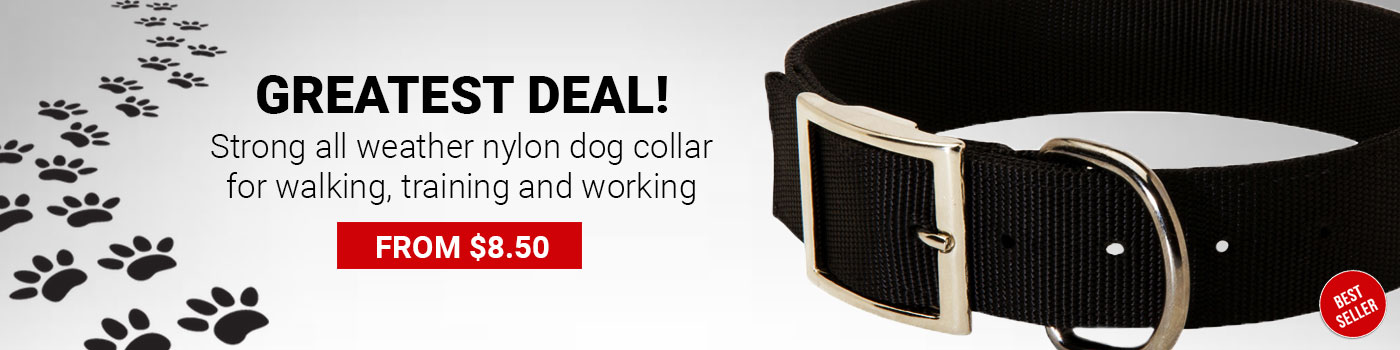 Double Layer Nylon Collar for Great Dane