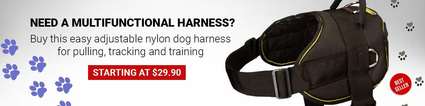 Nylon Multipurpose Harness for Great Dane